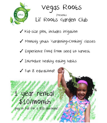 Lil Roots Flyer